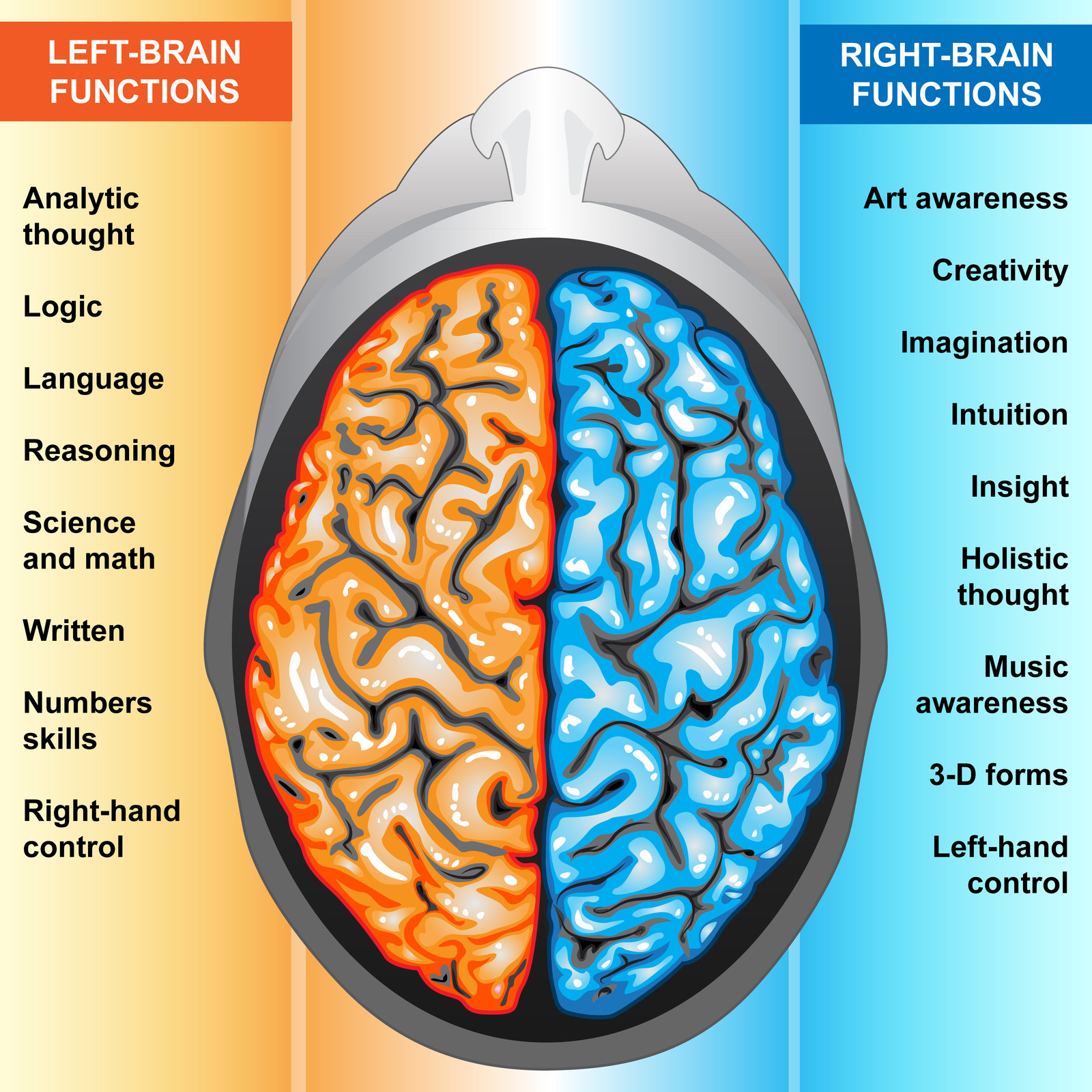 an analysis of the concept of mind and brain as a physical occurence An analysis of our concept of justification is furnishing the mind: concepts and the theoretical indispensability of concepts, behavioral and brain.
